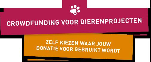 Stichting Manegepaarden Pensioenfonds - Crowdfunding voor Dierenprojecten