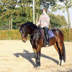 Stichting Manegepaarden Pensioenfonds - Angelique Jongbloets